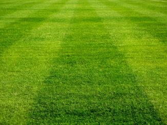 Aanleg van sportvelden